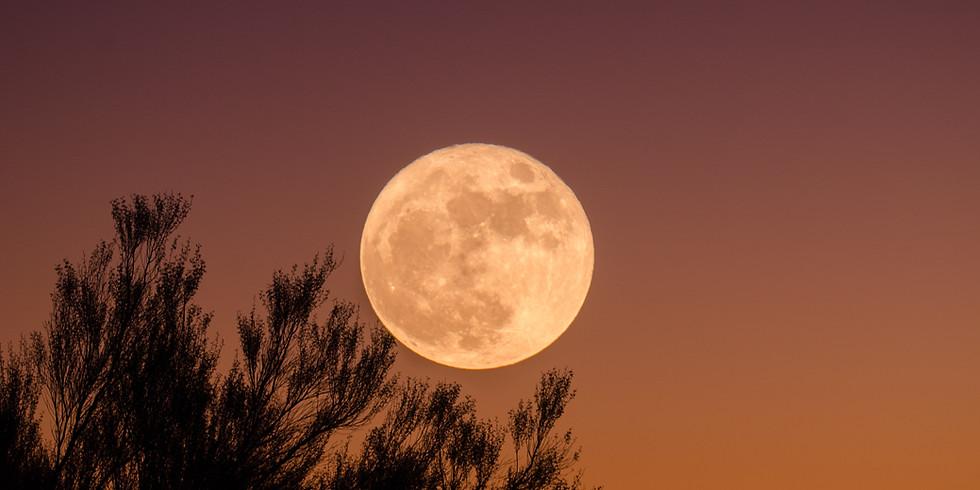Full Moon Ceremony & Soundbath