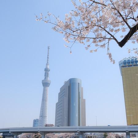 Image de Yu Kato