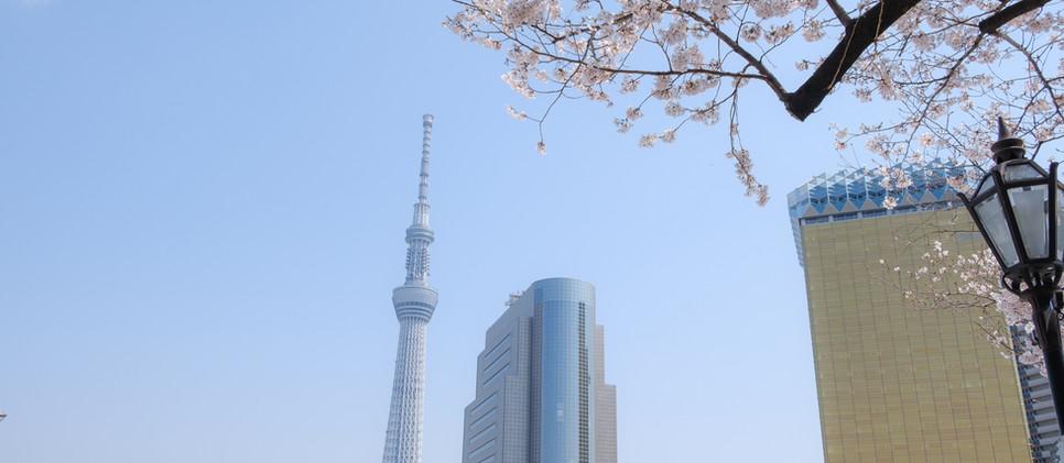 Sky Tree_Tokyo.jpg