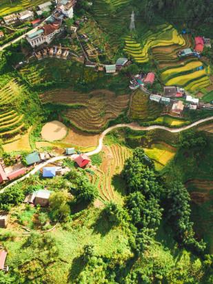 Qué ver en Sapa, mucho más que arrozales