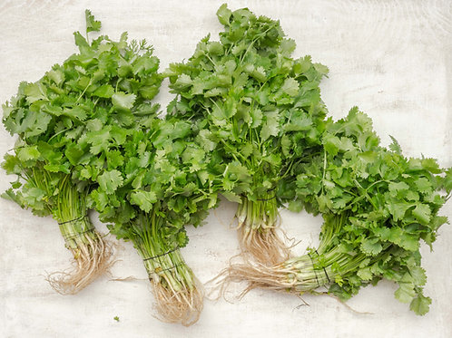 Coriander leaves [1 bunch approx. 150 g]