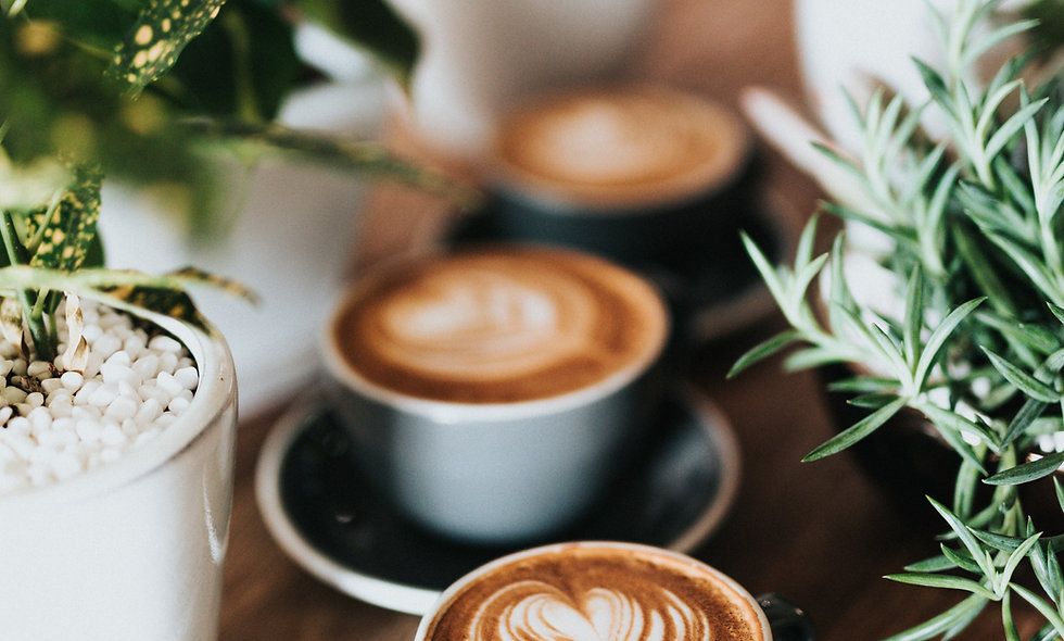 Very Profitable Cafe - Northern Gold Coast
