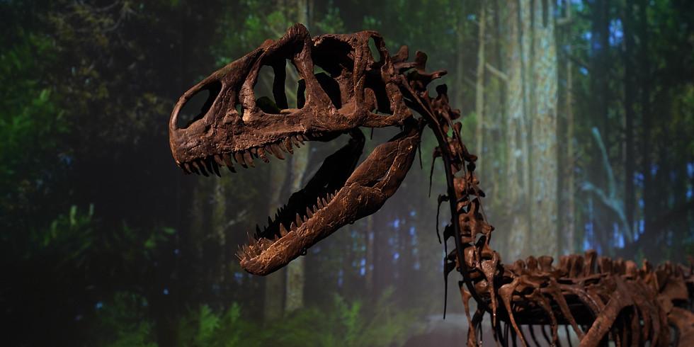 恐竜の化石を作ろう (3-6歳向け) 【Leland】