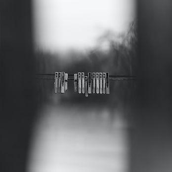 Image by Roma Kaiuk