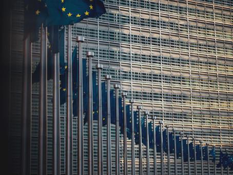 UE e diritto interno: la teoria dei controlimiti. Il caso Taricco