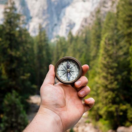 Te Araroa trail : le top 3 des meilleures applications de cartes et GPS
