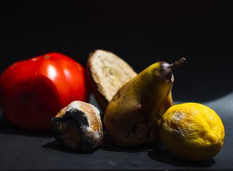 Feeding the Circular Economy, One (Big) Apple at a Time