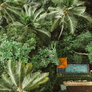 Dónde alojarse en Bali: Mejores Zonas y hoteles