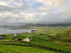 Donegal Tweed Ireland Naturgarn Shop