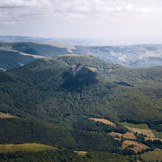 Découverte des Volcans d'Auvergne et plantes sauvages