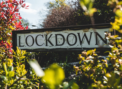 Dominic Cummings: The Lockdown Tour