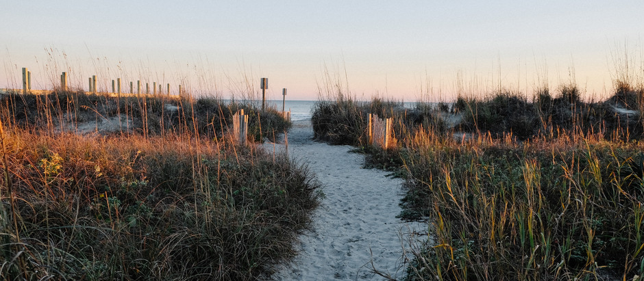 How to Spend Your January in Charleston