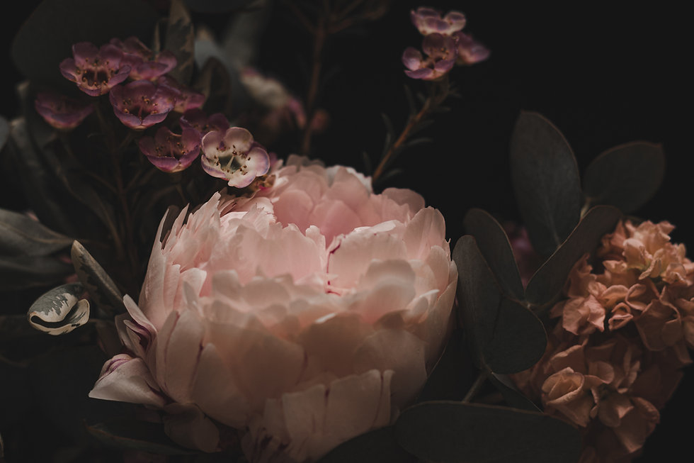 Image by Inesa Cebanu