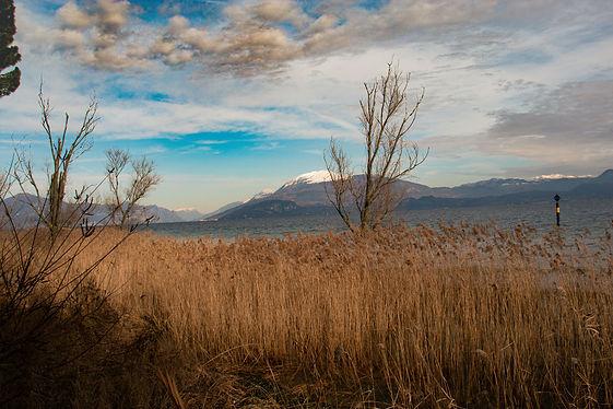 GardaVille Affitti Brevi Ville Sul Lago di Garda   Case Vacanze   Ville Esclusive