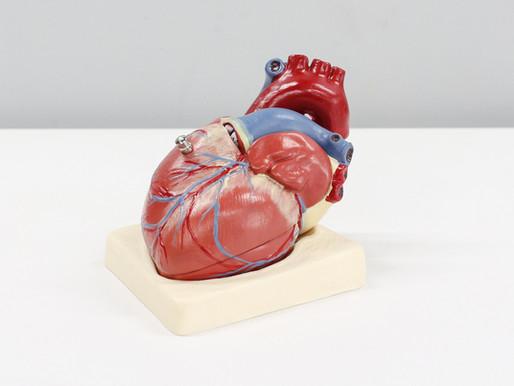 THE TRUTH BEHIND HEART DISEASE