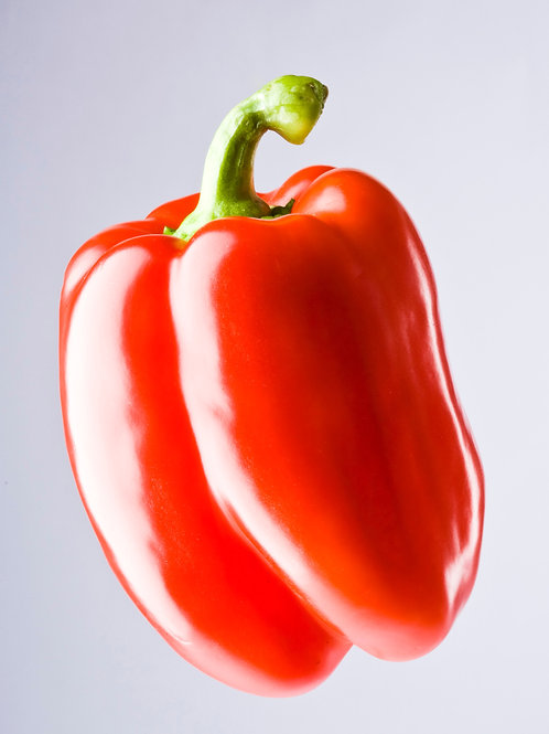 Pepper - red capsicum