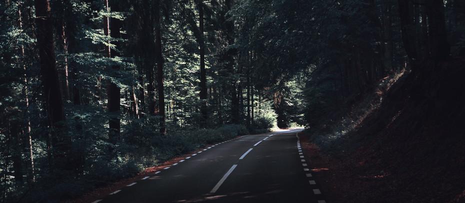 Öykü- Aras Gençtürk- Yolculuk