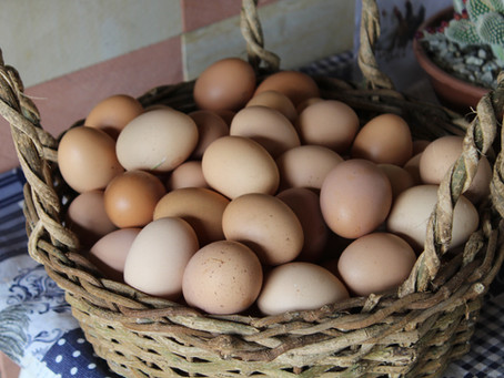 "What Those Egg Carton Labels Really Mean *hint: ""cage-free"" isn't what you think*"