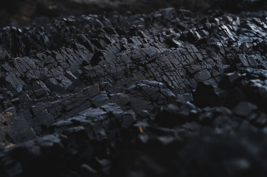 The role of coal