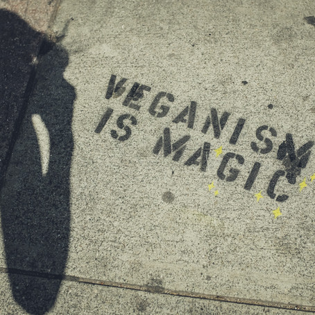 Celebrate World Vegan Day & Month!