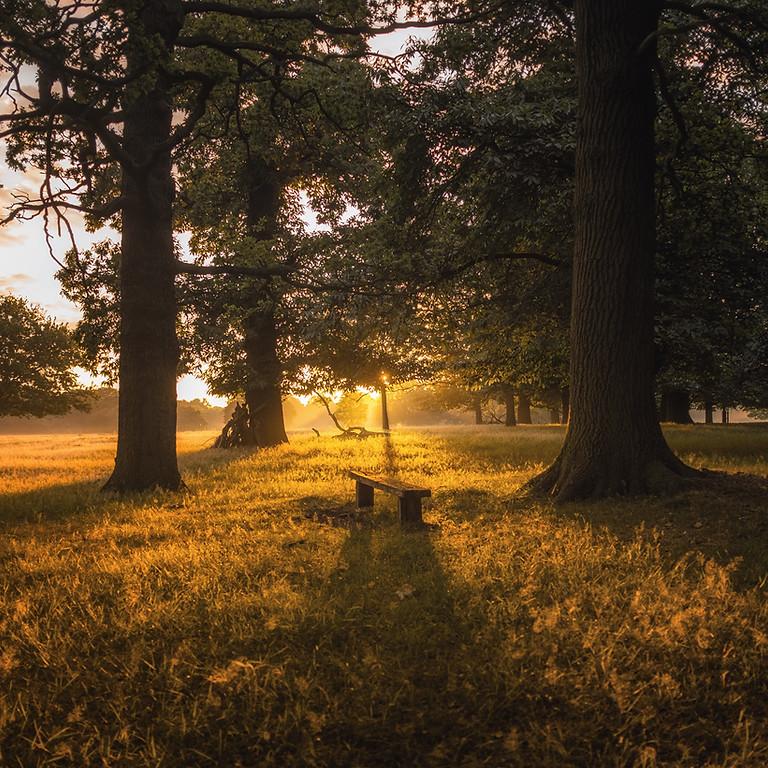 Richmond Park Retreat