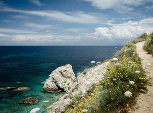 Image by Paolo Bendandi