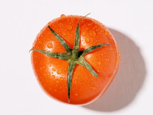The Tomato that Got Squashed