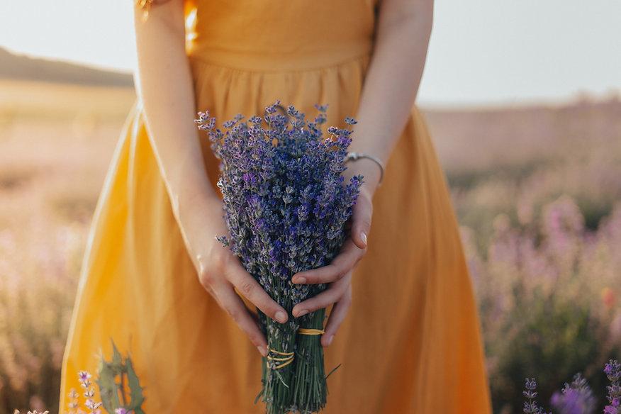 El poder de las plantas en tus manos