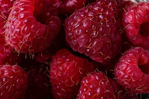 Raspberry Pie Bars. Dozen.
