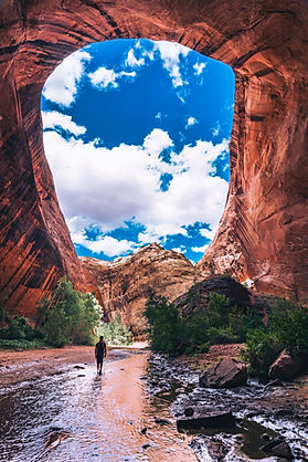 Photograph looking up at cloudy skies among red rock cliffs