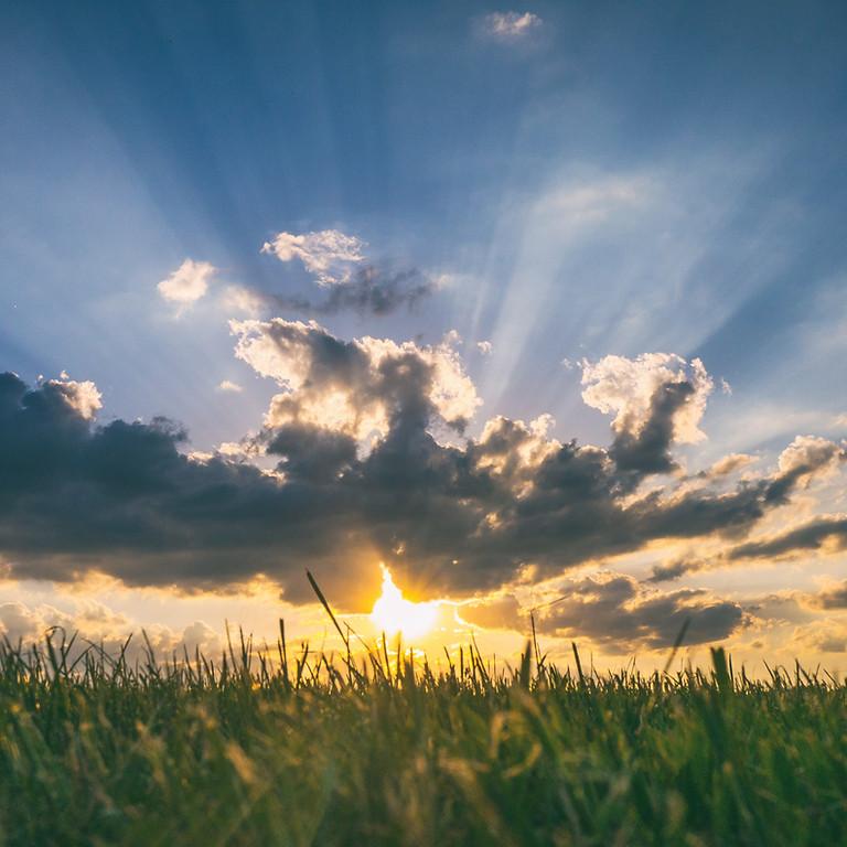 Radiating Rays - Group Healing June 2021 (FOC)
