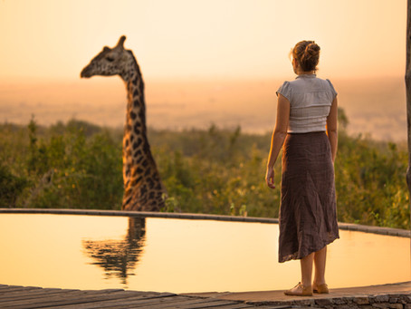 African Safari Proposal...in Houston