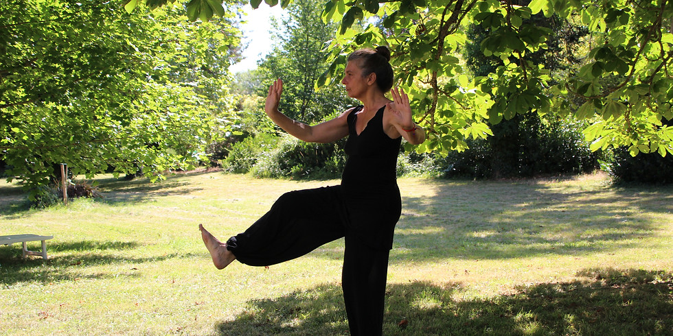 In-person Tuesday Qigong Practice - 7/28