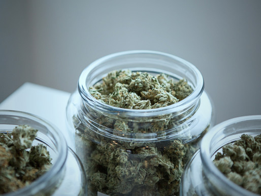 """""""No Evidence"""" that Adult-Use Marijuana Laws Influence Cannabis Use by Teens"""