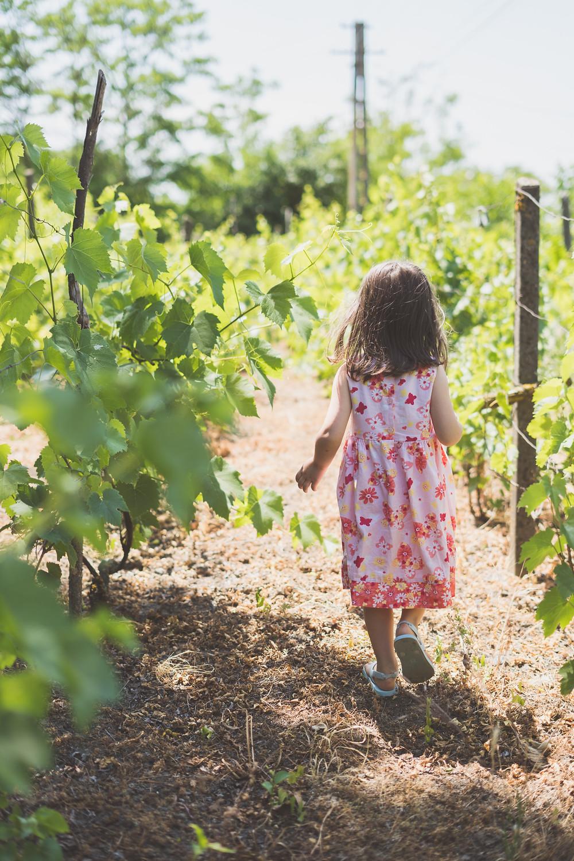 Curious little girl exploring nature