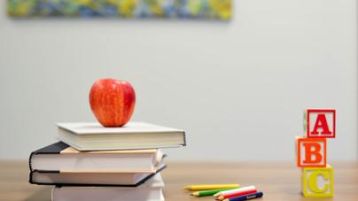 Dichiarazione di immediata disponibilità personale precario scuola