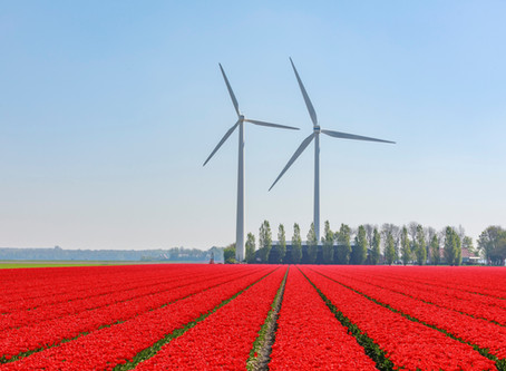 Shell, Gasunie and Groningen join forces for mega wind and hydrogen plant