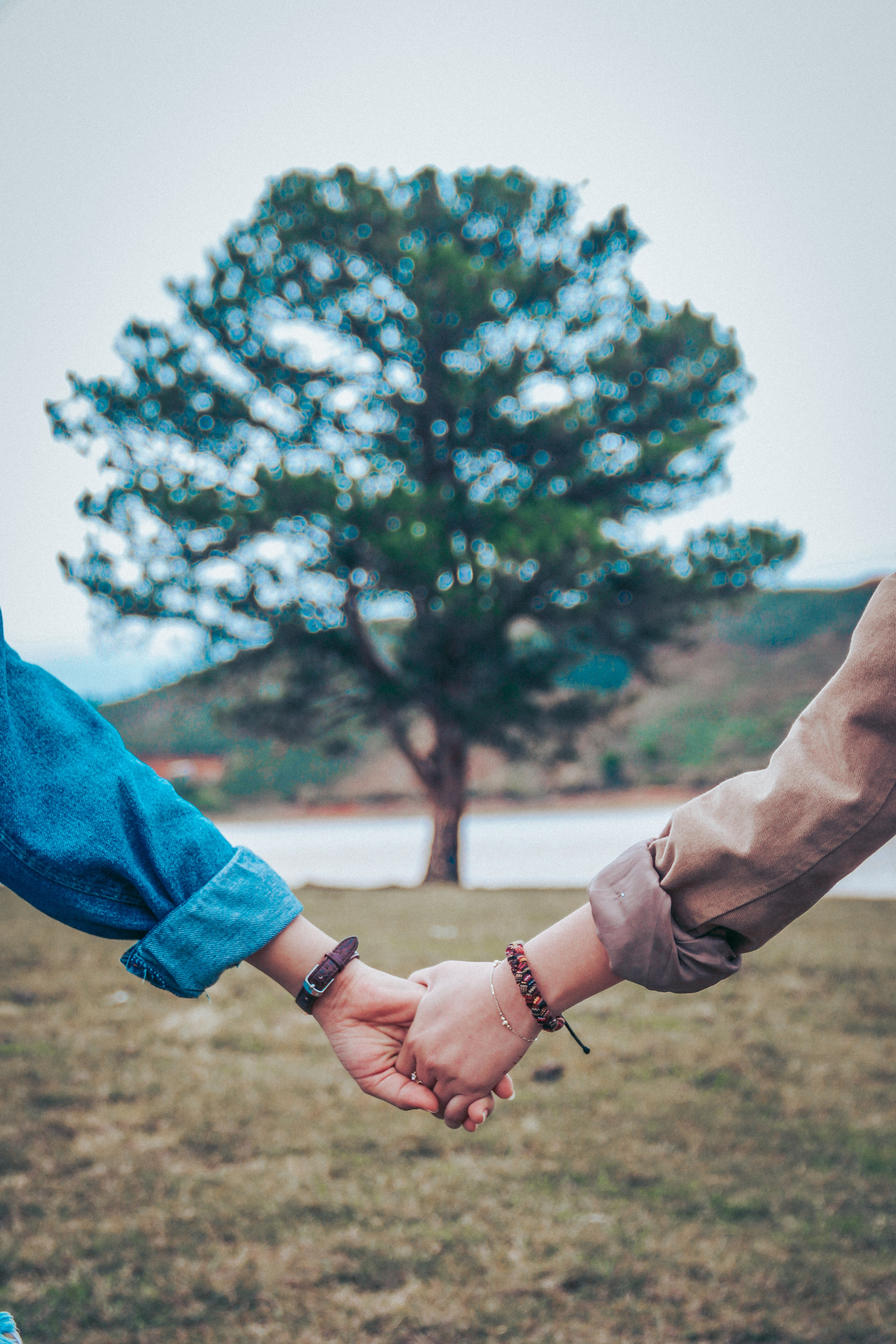 Couples and Marital Counseling