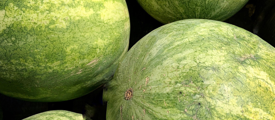The Melons Sermon (Warning, you might get offended)