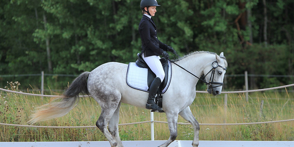 Evening Flatwork sessions with Bethany Light