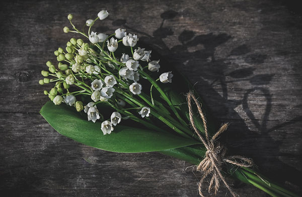 un brin de muguet lily of the valley