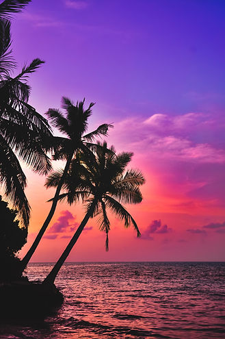 Pink tropical sunset in Hawaii.
