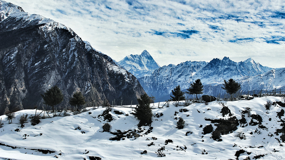 Auli   Beautiful And Peaceful Travel Tourist Destination Surrounded By Forests And Himalayas