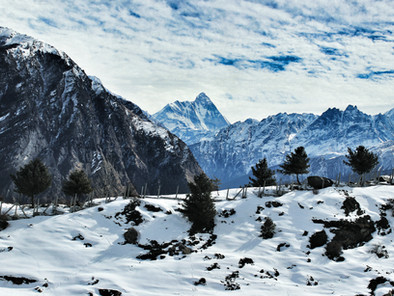 Auli | Beautiful And Peaceful Travel Tourist Destination Surrounded By Forests And Himalayas