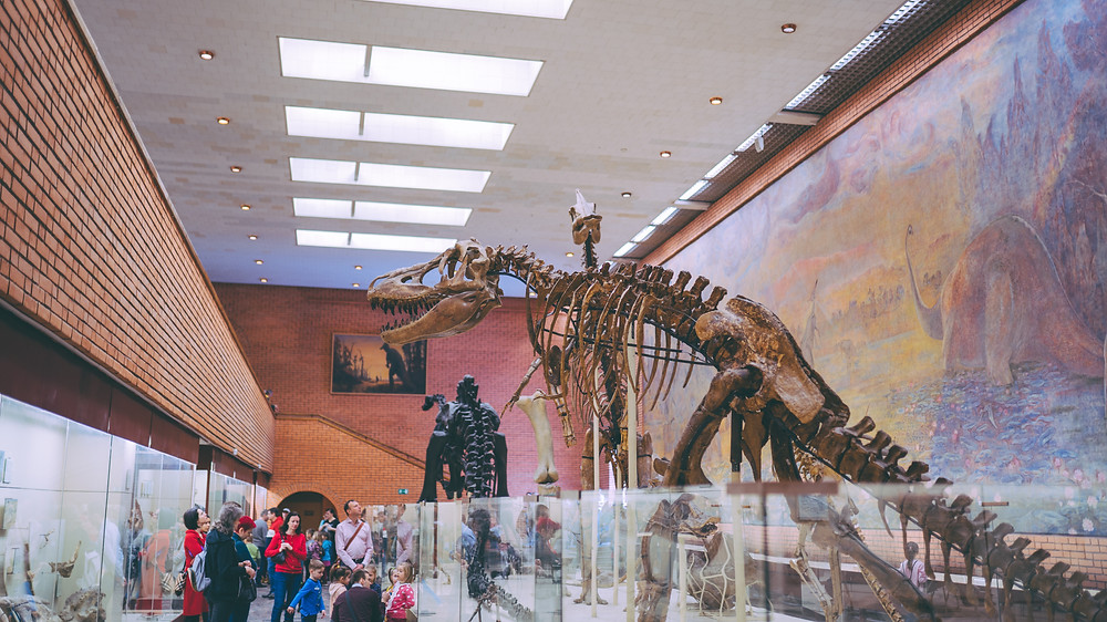 20 Fun Museums Offering Free Virtual Tours in 2021