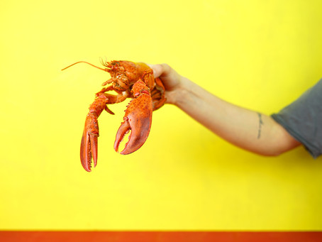 Janet Pholse Vs. The Unromantic Sainsbury's Lobster
