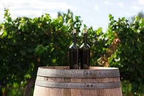 British Wine Brands