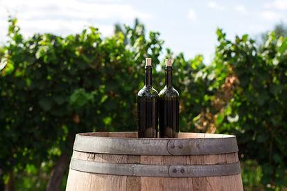 Vanorel - Les vins du languedoc