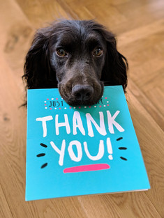 """Say """"Thank You"""""""