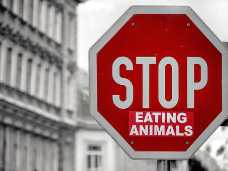 Veganism: Post Veganuary